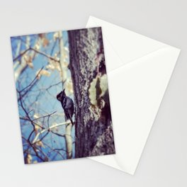 Baby Woodpecker  Stationery Cards
