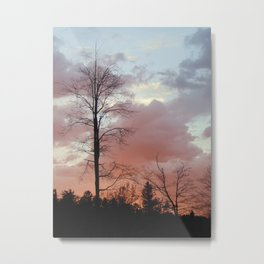 Finding Solace Metal Print