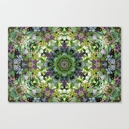 SacredSucculentGeo Canvas Print