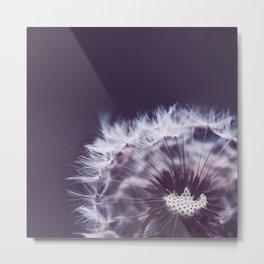 Violet Dandelion Metal Print