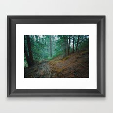 into the woods 04 Framed Art Print