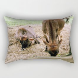 Farm Rectangular Pillow