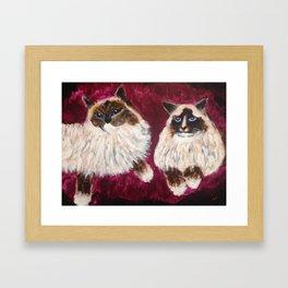 Posing Cats Framed Art Print
