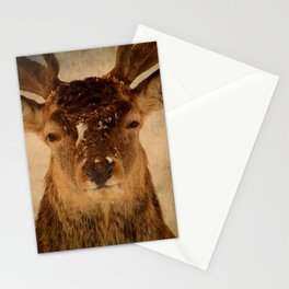 Deer In Headlights Stationery Cards