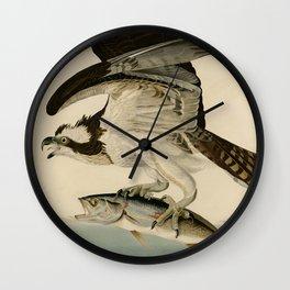 Vintage Osprey Catching a Fish Illustration (1838) Wall Clock