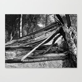 Broken By Forces Canvas Print