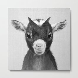 Baby Goat - Black & White Metal Print