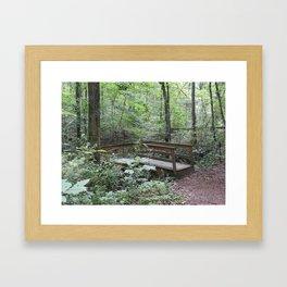 Bridge in the Woods Framed Art Print