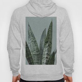 Snake plant in green Hoody