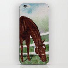Sissy's Horse iPhone Skin
