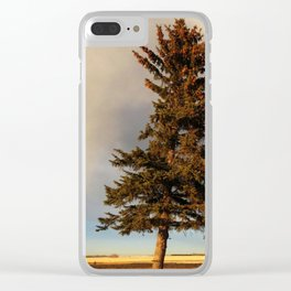 Alone at Dusk Clear iPhone Case