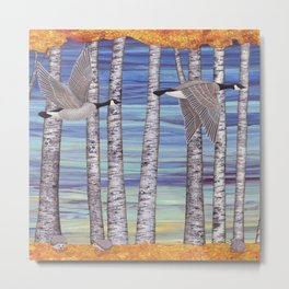 Canada geese, hedgehogs, and autumn birch trees Metal Print
