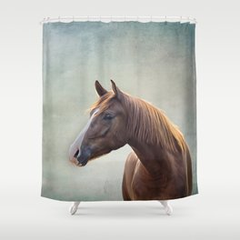 Horse. Drawing portrait Shower Curtain