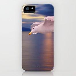 Sunset Flight iPhone Case
