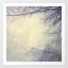 Creepy Trees Polaroid Art Print