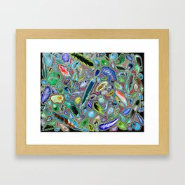 Feathers of birds of the world Framed Art Print