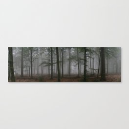 Atmospheric beech forest Canvas Print