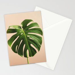 Vedure #8 Stationery Cards