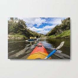 Roaming the river Metal Print
