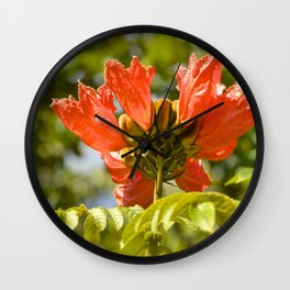 """Flaming-red Peacock (i)"" by ICA PAVON Wall Clock"