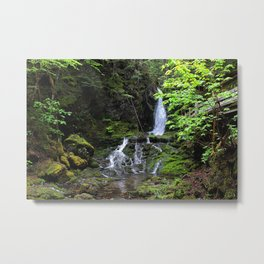 Fallen amongst the forest Metal Print