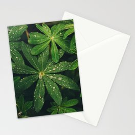 Floral Foliage Stationery Cards