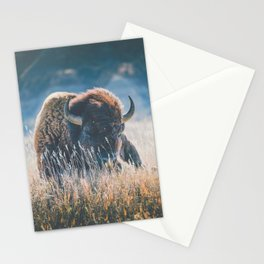 Quiet Seasons Stationery Cards