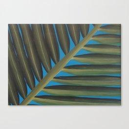 Tropical palm frond leaf Canvas Print
