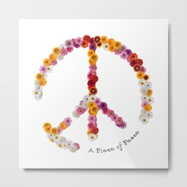 A Piece of Peace - 2016 Metal Print