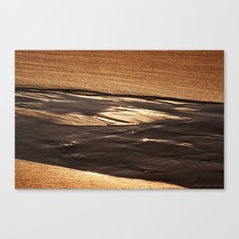 on golden sands Canvas Print