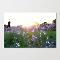 Sunset in Spring Canvas Print