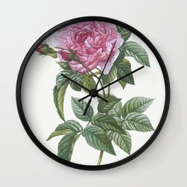 Gallic Rose, Rosa gallica regalis from Les Roses (1817-1824) by Pierre-Joseph Redoute Wall Clock
