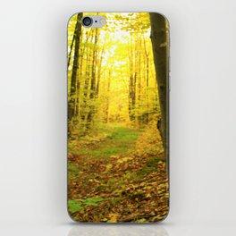 Autumnal Pathway iPhone Skin