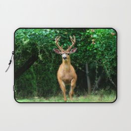 Still In Velvet Laptop Sleeve