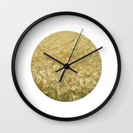 soft rye field II Wall Clock
