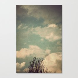 Unkindness Canvas Print