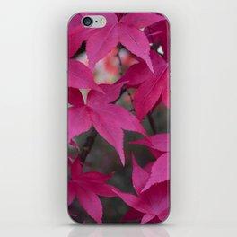 Autumn Reds iPhone Skin