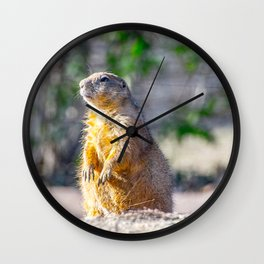 The Good Gopher Wall Clock