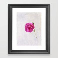 Carnation on paper Framed Art Print