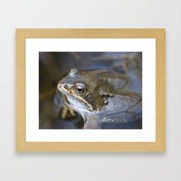 Croak the frog Framed Art Print