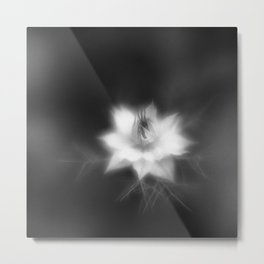 Botanica Obscura #6 Metal Print