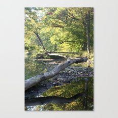 criss cross creek Canvas Print