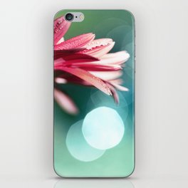 Nature's Dreaming - pink gerbera macro with mint / aqua bokeh iPhone Skin