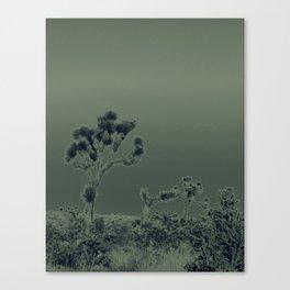 jt en verde Canvas Print