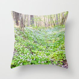 Oxalis acetosella or common wood sorrel. Close up blooming view in spring in the forest. Throw Pillow