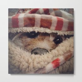Warm Blanket Metal Print