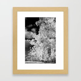 The Path Less Travelled Framed Art Print