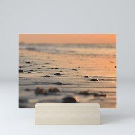 Shells on a Dutch beach during sunset -- Pastel blush pink travel art Print Mini Art Print