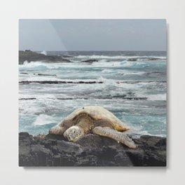 Hawaiian Honu - Sea Turtle Metal Print