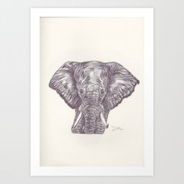 BALLPEN ELEPHANT 11 Art Print